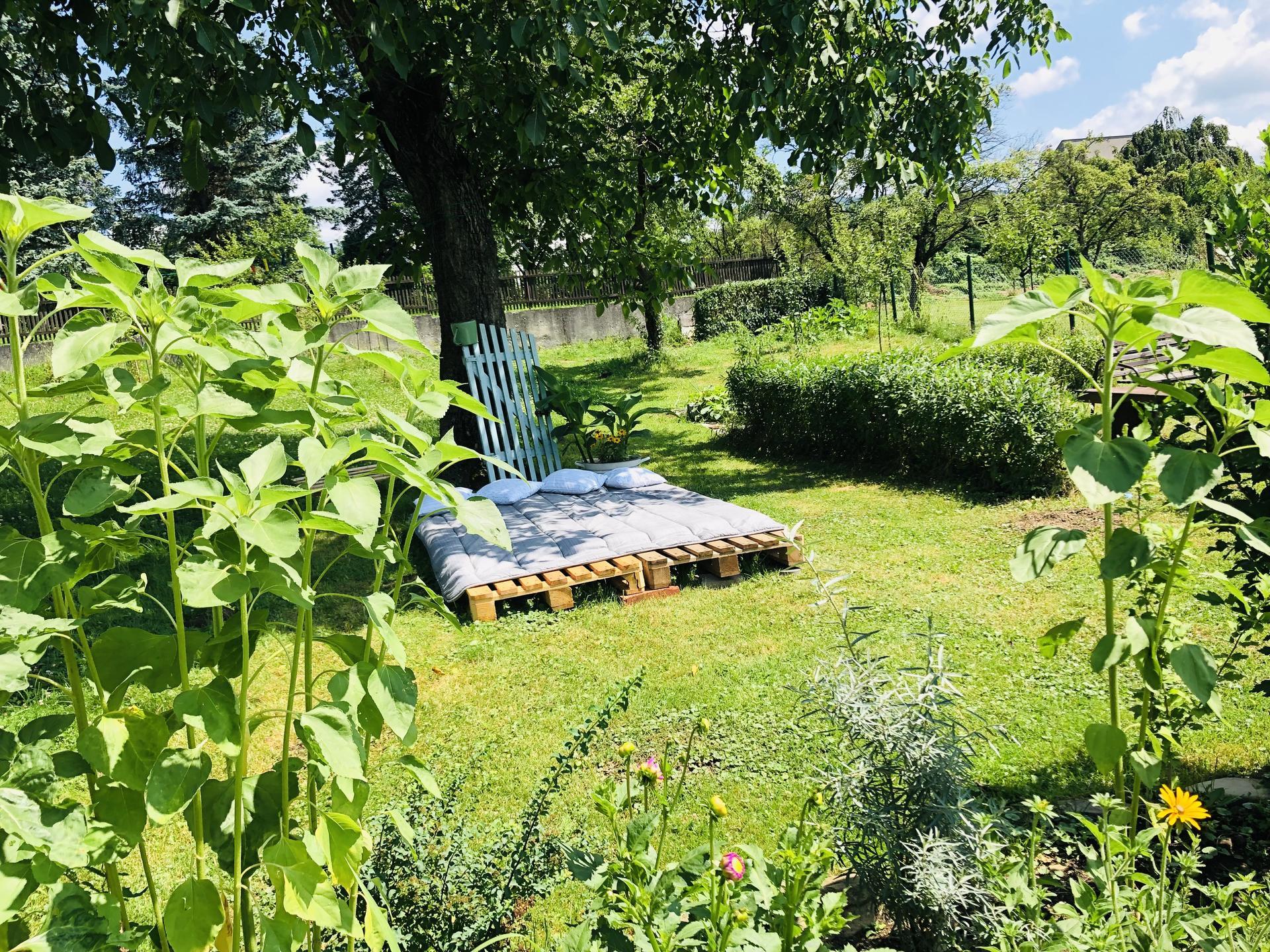 U nás doma a na zahradě 2021 - Obrázek č. 67