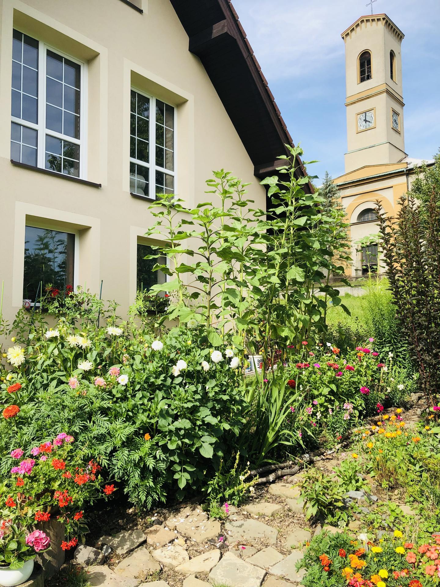 U nás doma a na zahradě 2021 - Obrázek č. 70