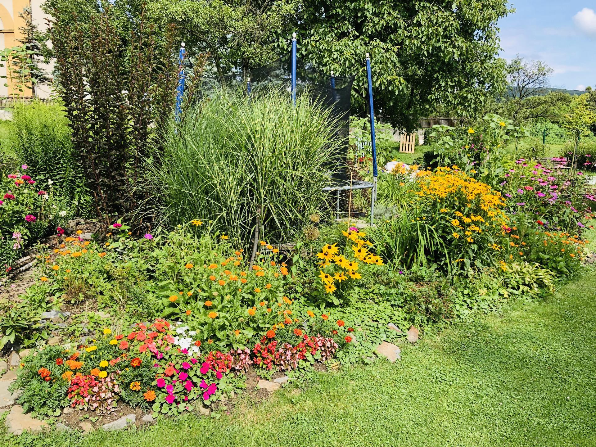 U nás doma a na zahradě 2021 - Obrázek č. 69