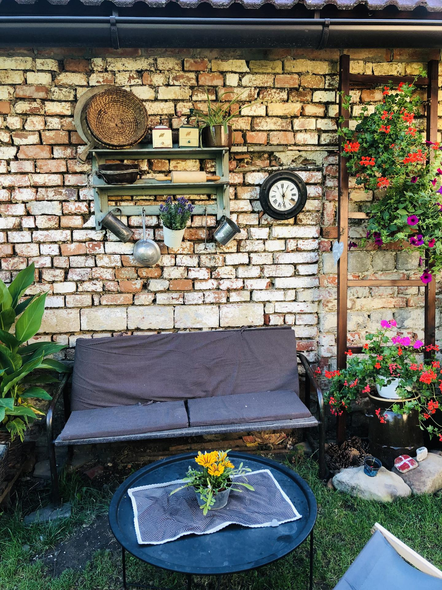 U nás doma a na zahradě 2021 - Obrázek č. 72