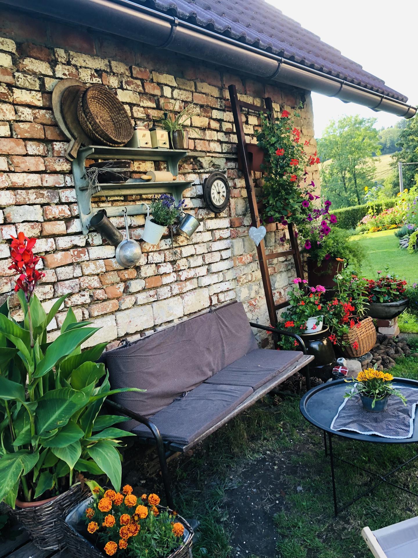 U nás doma a na zahradě 2021 - Obrázek č. 73