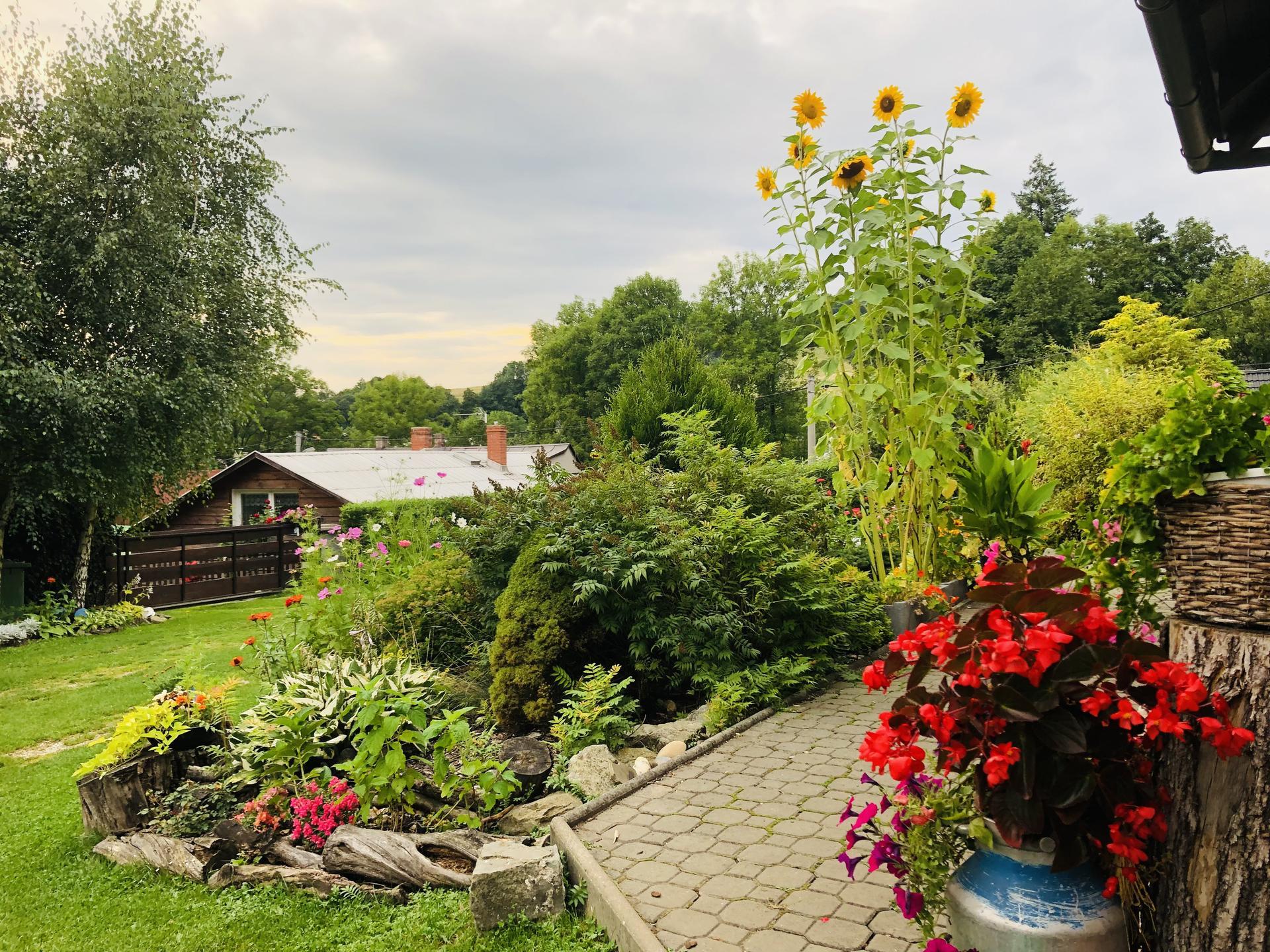 U nás doma a na zahradě 2021 - Obrázek č. 78