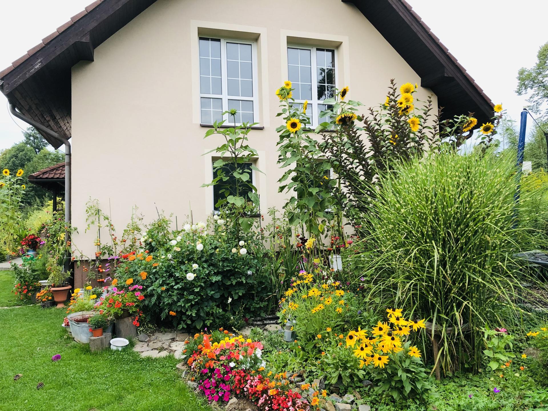 U nás doma a na zahradě 2021 - Obrázek č. 80