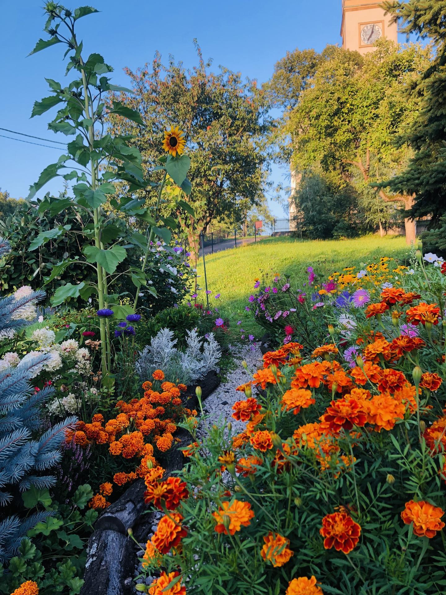 U nás doma a na zahradě 2021 - Obrázek č. 90