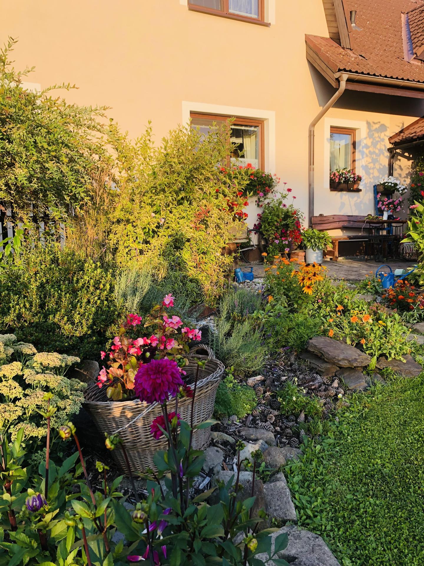 U nás doma a na zahradě 2021 - Obrázek č. 86