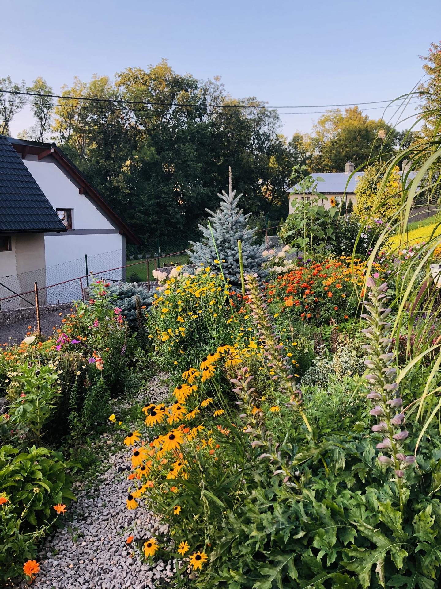 U nás doma a na zahradě 2021 - Obrázek č. 91