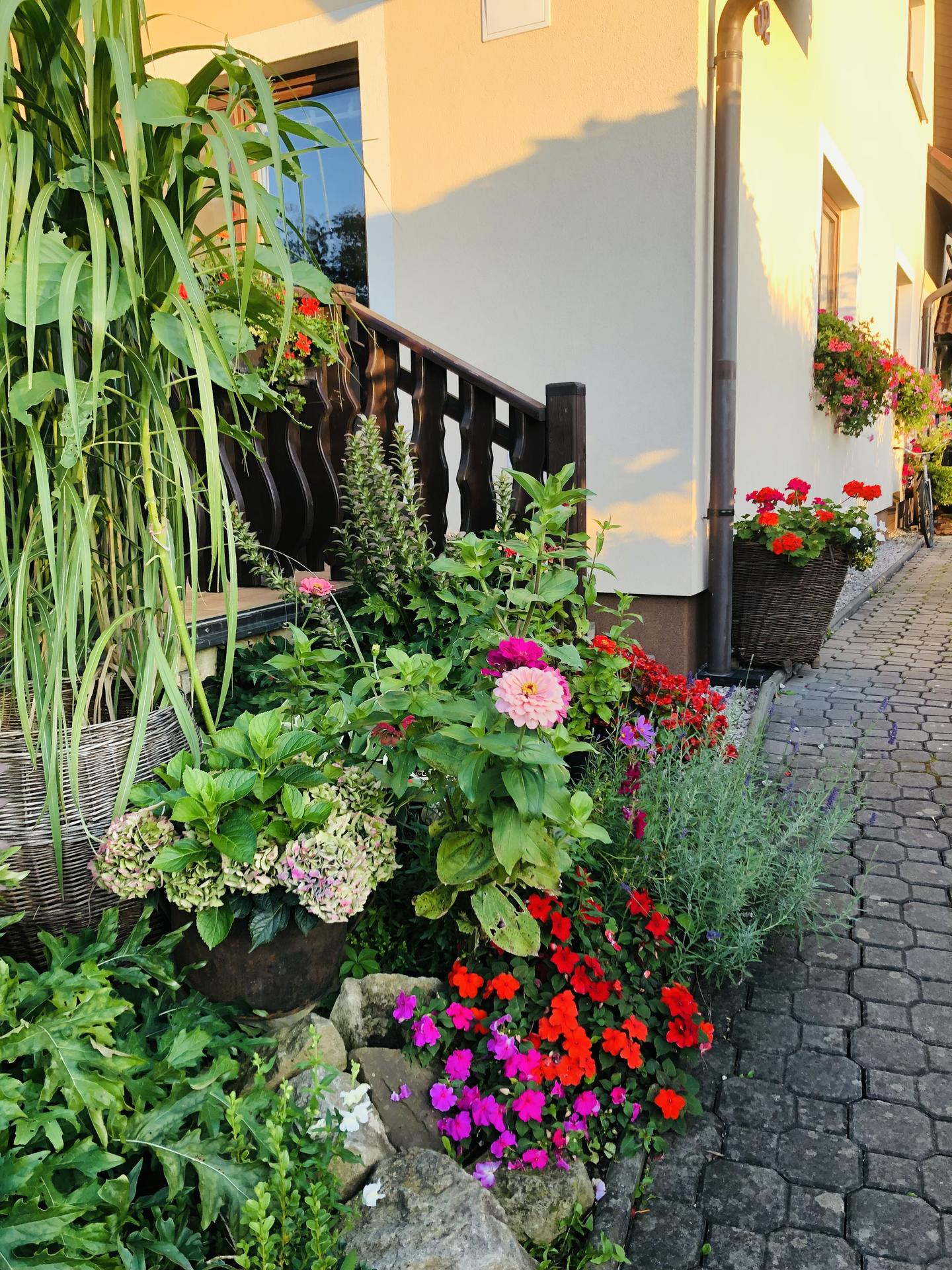 U nás doma a na zahradě 2021 - Obrázek č. 96