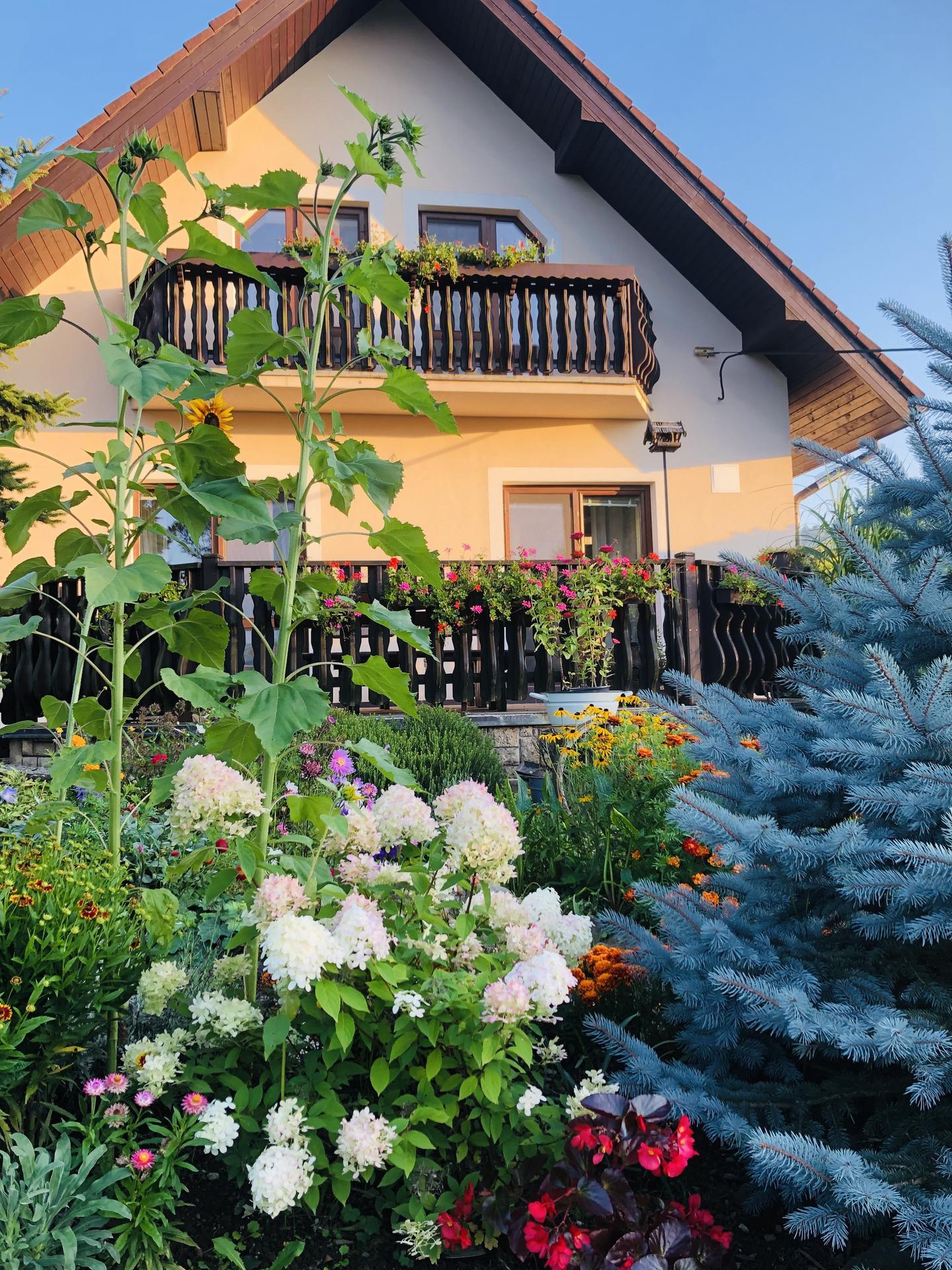U nás doma a na zahradě 2021 - Obrázek č. 94