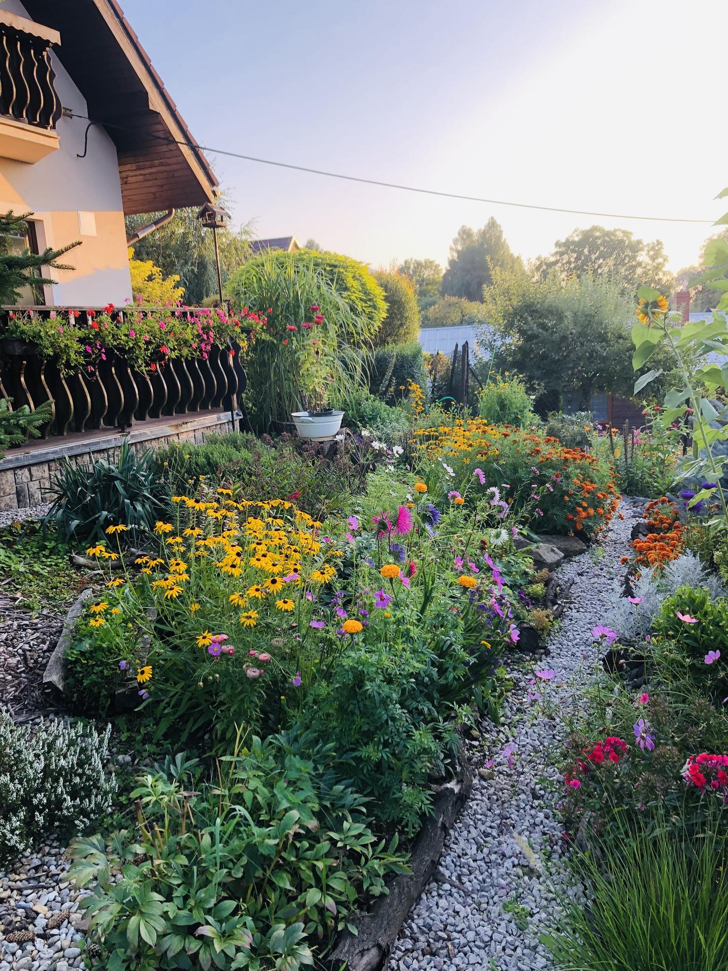 U nás doma a na zahradě 2021 - Obrázek č. 100