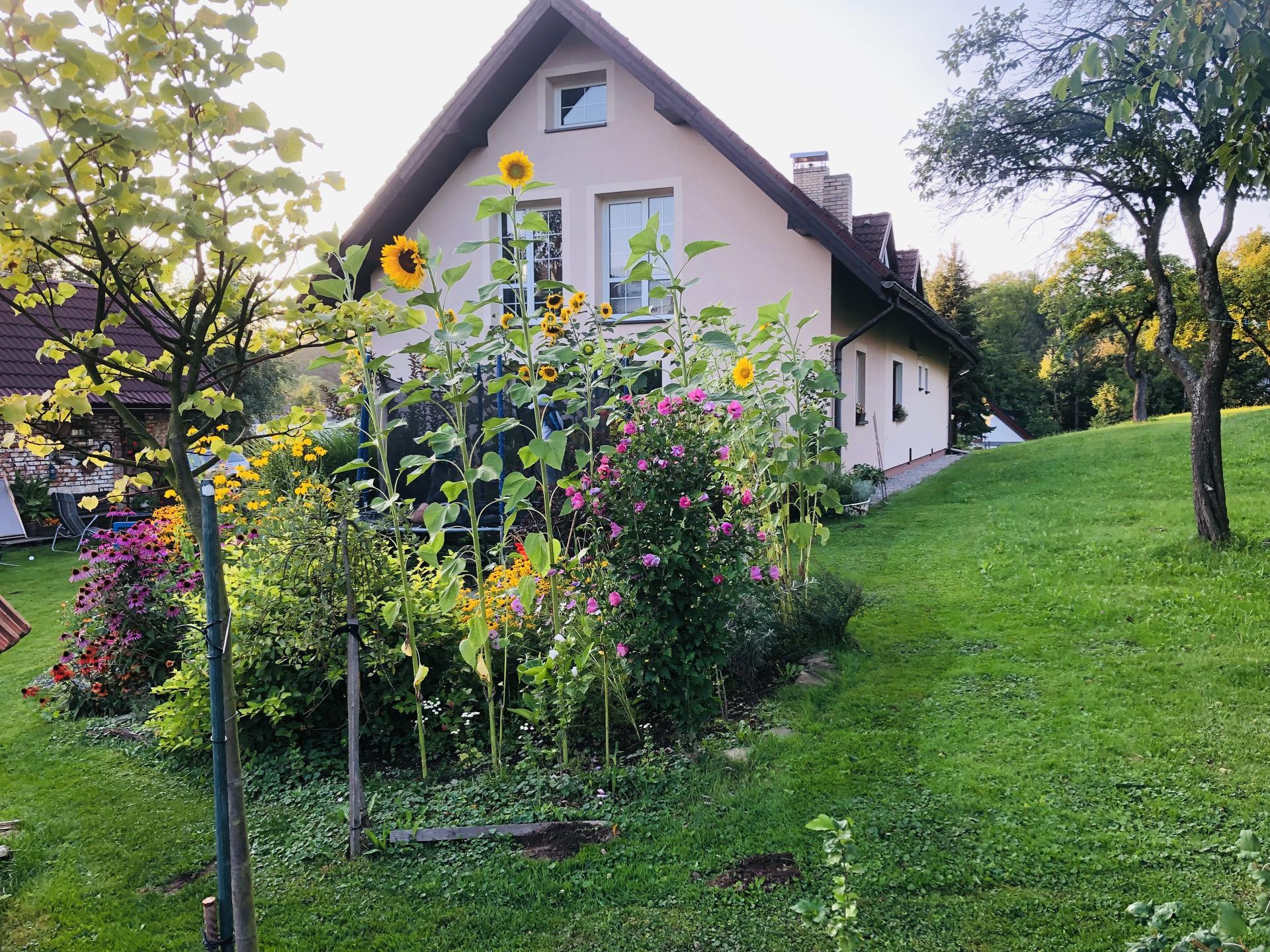 U nás doma a na zahradě 2021 - Obrázek č. 97