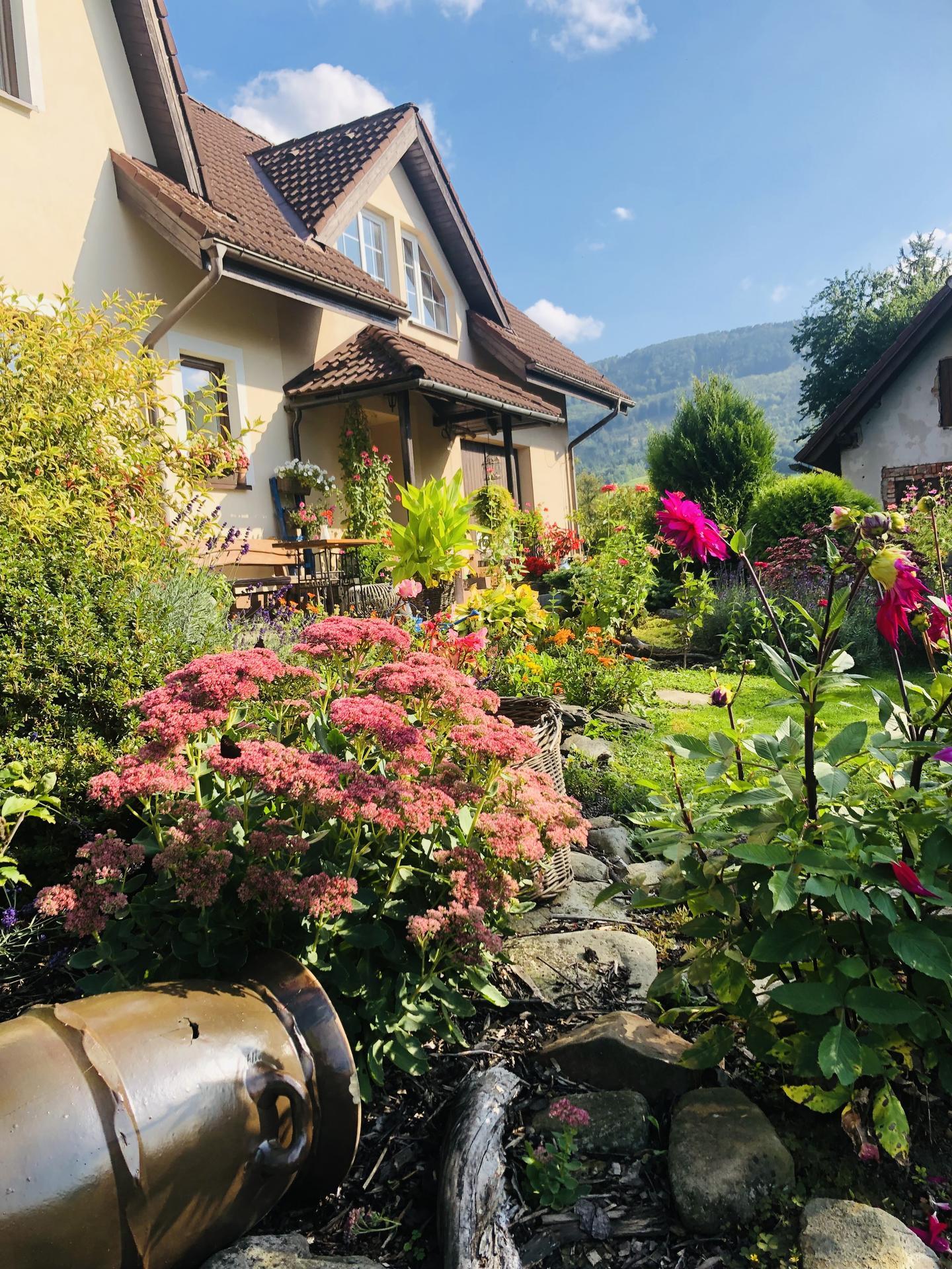 U nás doma a na zahradě 2021 - Obrázek č. 110
