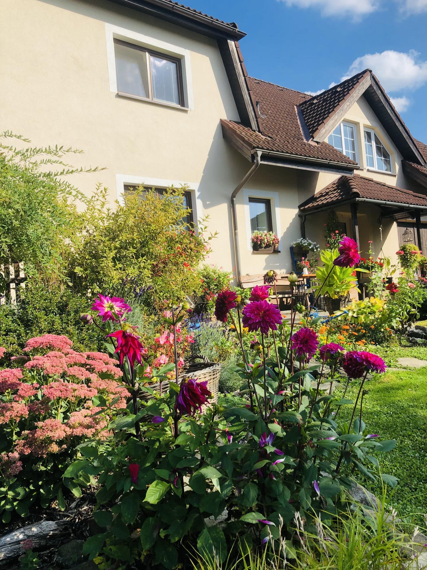U nás doma a na zahradě 2021 - Obrázek č. 108