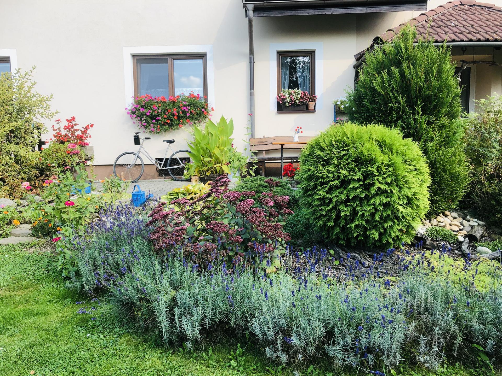 U nás doma a na zahradě 2021 - Obrázek č. 109