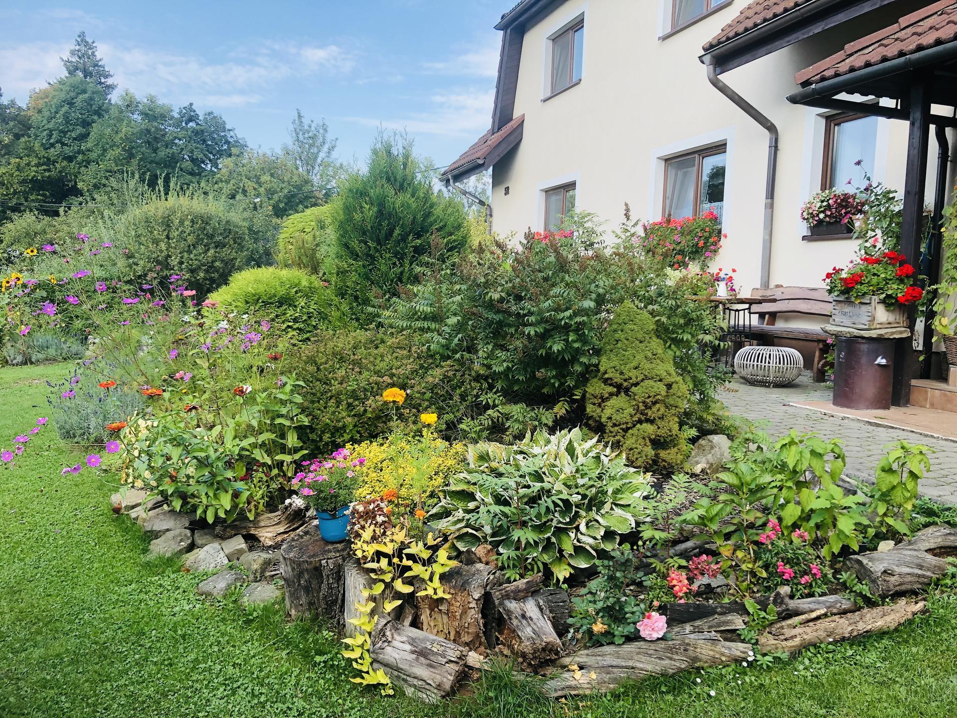 U nás doma a na zahradě 2021 - Obrázek č. 116