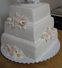 takata torticka bude