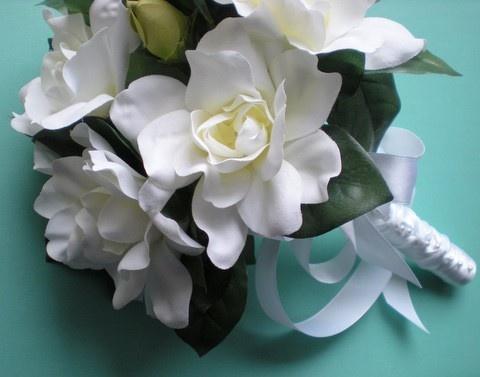Kytica - Gardenie