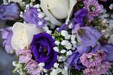 v lila tónech detail