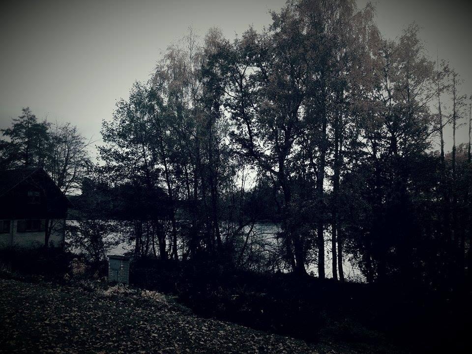 Na chatě u Pejru - Výhled z verandy: Rybníky u Ondřejova, na léto opravíme loďku a bude romantika