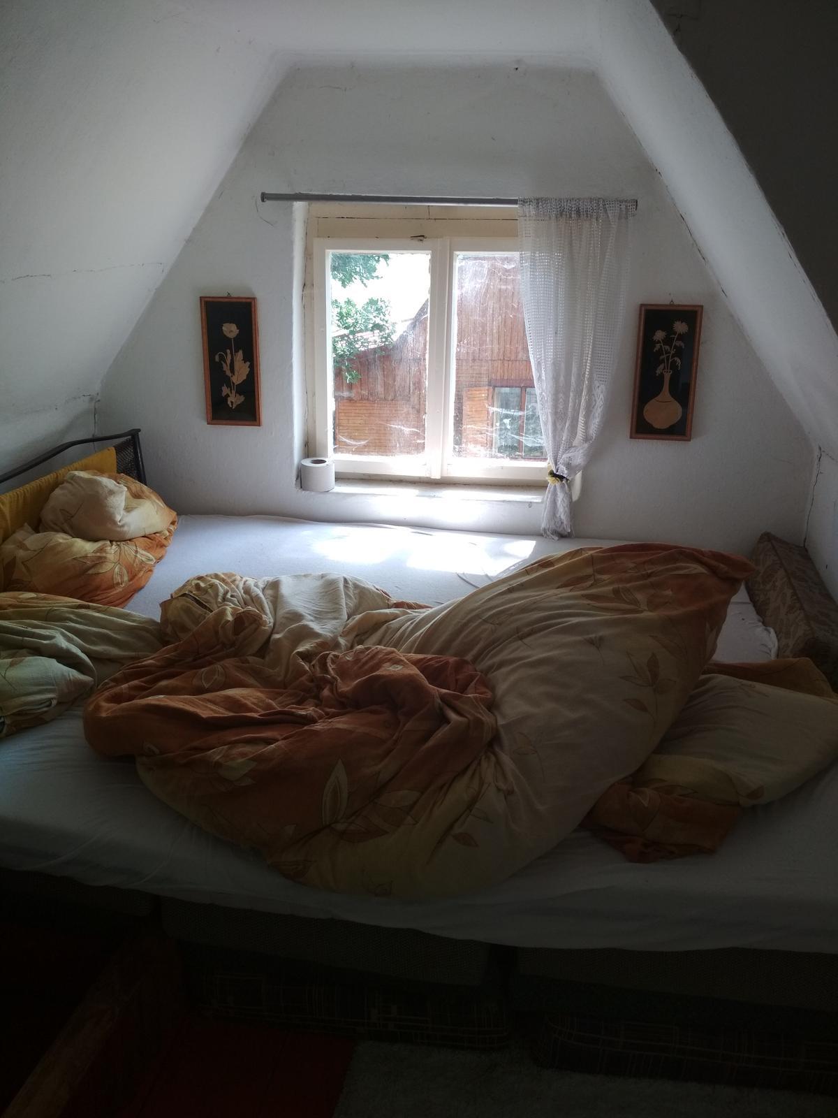 Na chatě u Pejru - Chce to nové omítky,  obrousit okna,  nový komín a střechu. Zatím neřešíme, máme jiné výdaje,  snad časem postupně