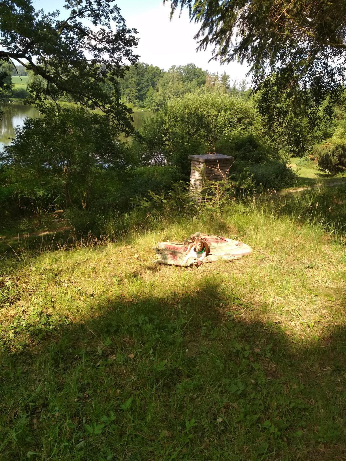 Na chatě u Pejru - Obrázek č. 52