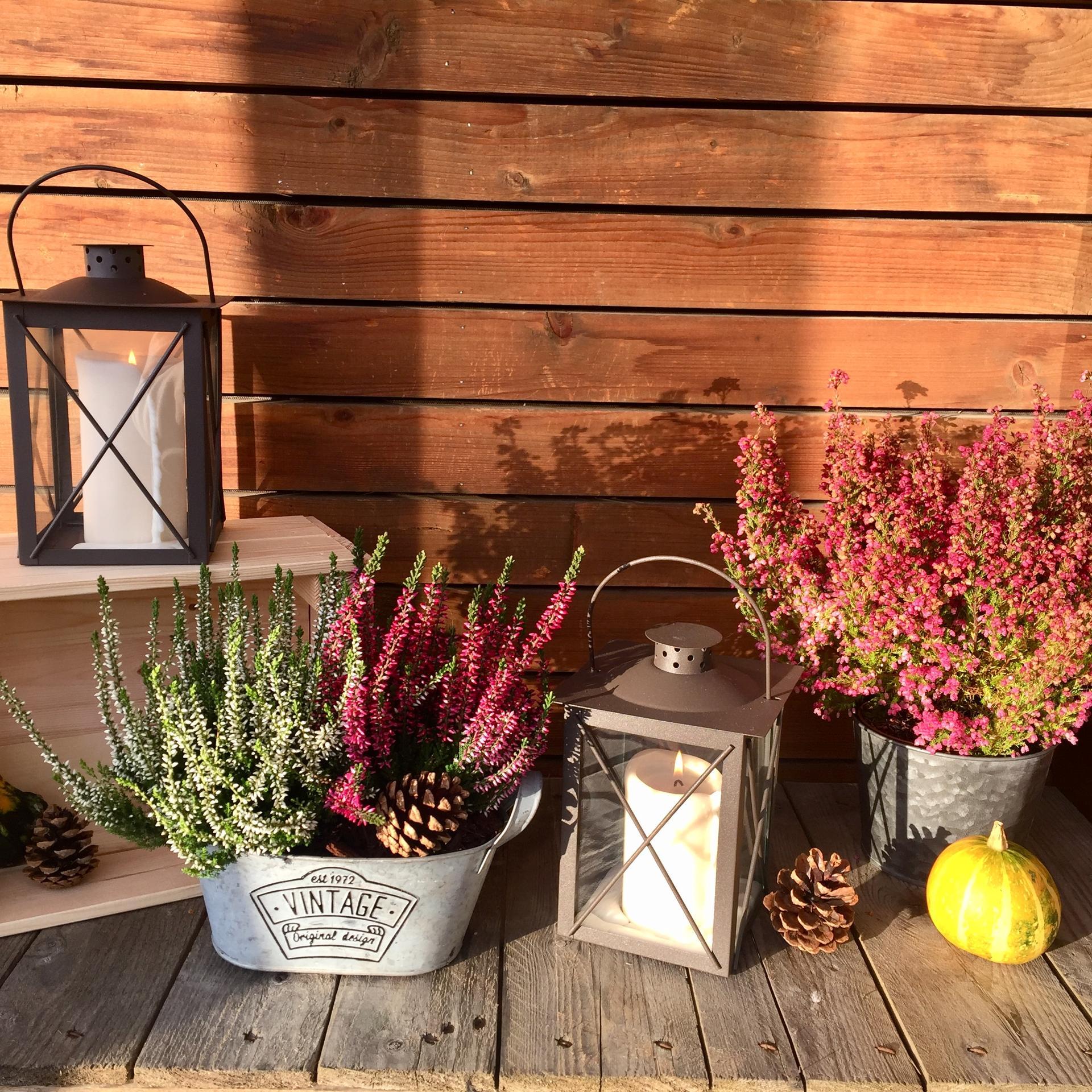 ✨ Vyčarujte si doma útulnou atmosféru hřejivými dekami, měkkými plédy, dekorativními polštáři, šálkem teplého čaje a typickými podzimními vůněmi 🍂 Produkty u nás najdete rychle, pohodlně a na jednom místě 👉 https://www.biano.cz/kolekce/zaridte-si-utulnou-domacnost - Obrázek č. 3