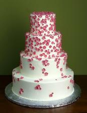 dort - kytičky