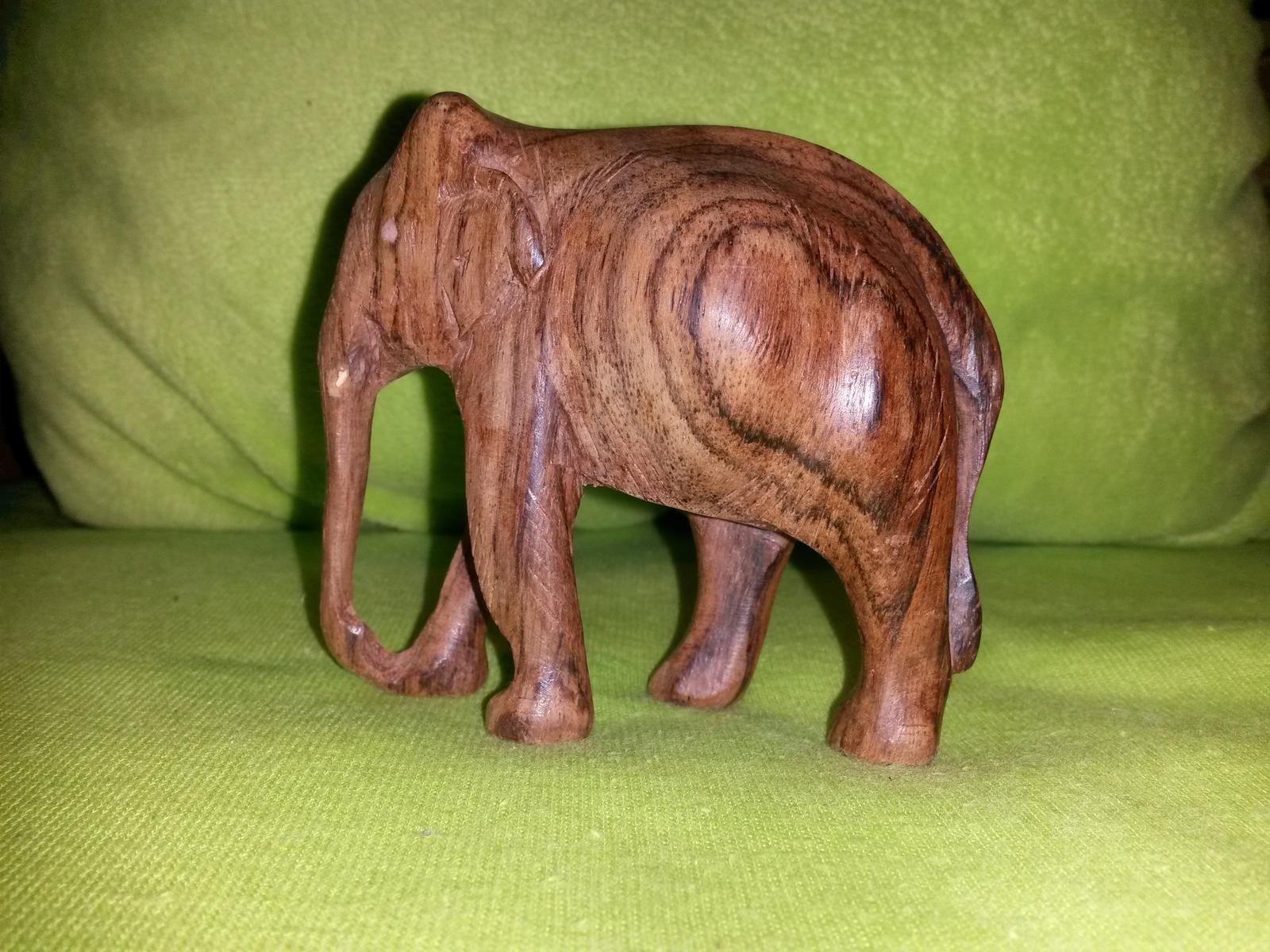 Slonik dreveny - Obrázok č. 1