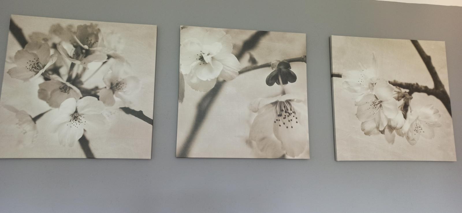 obraz/obrazy Ikea - Obrázek č. 1