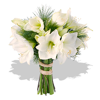 Naše zimní pohádka.... - svatební květina vybraná - každopádně amaryllis!