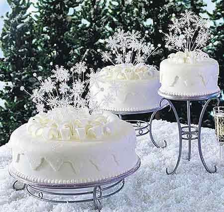 Winter Wedding - Obrázok č. 78