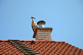 Aha, čo mal sused na streche. Našu obtoto :-) deň predtým a takto si ten bocian chodí zaradom po celej ulici :-)