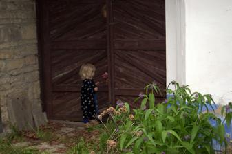 Kůzlátka,otevřete vrátka.To jsem já váš tatínek :-) šup vrata na řetěz