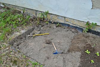 vedle jsou gladioly :-) je to fuška dělat ze zahrady záhon :D