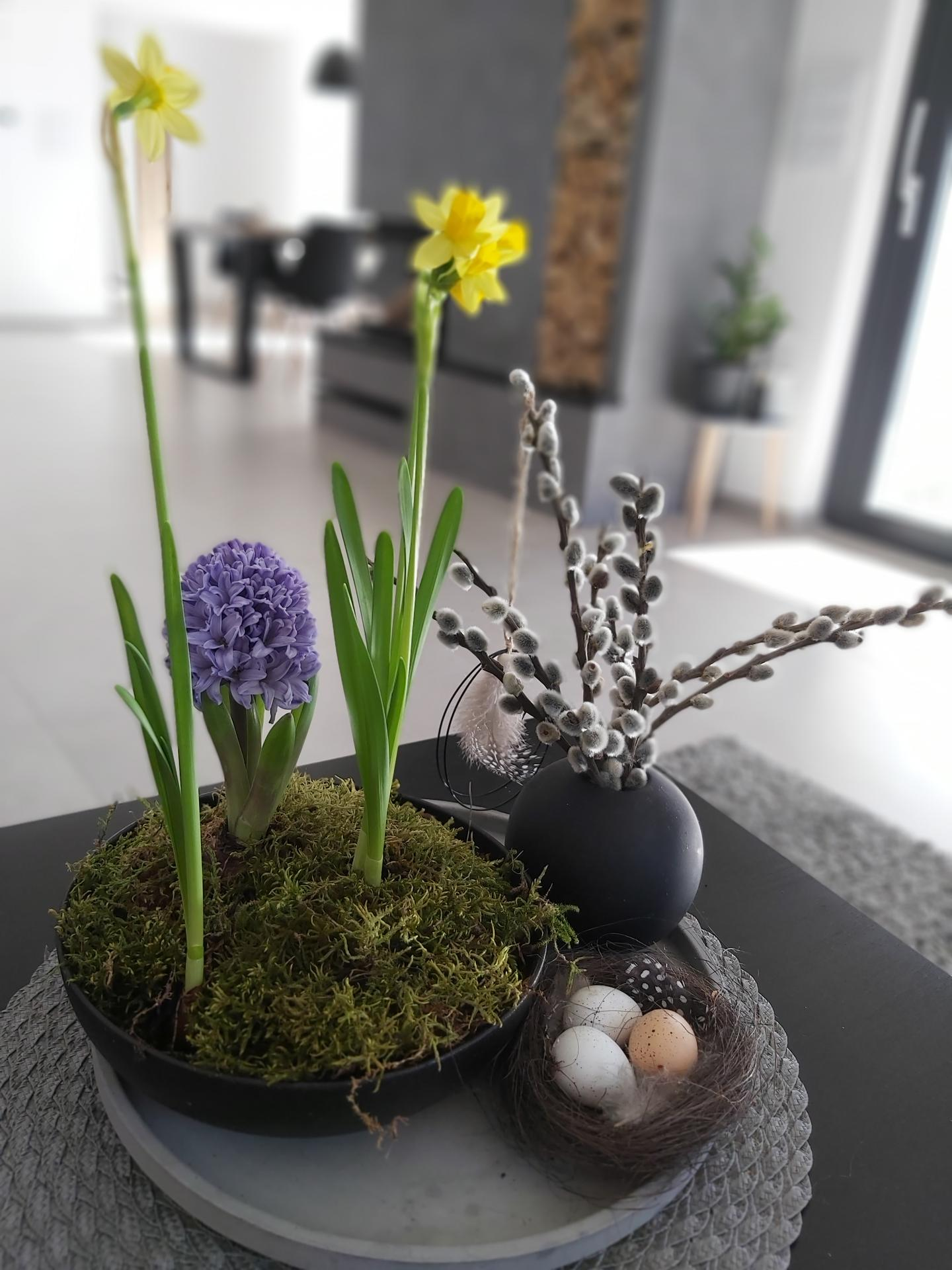 Jaro 2021 - Venku sníh, doma jaro🌼