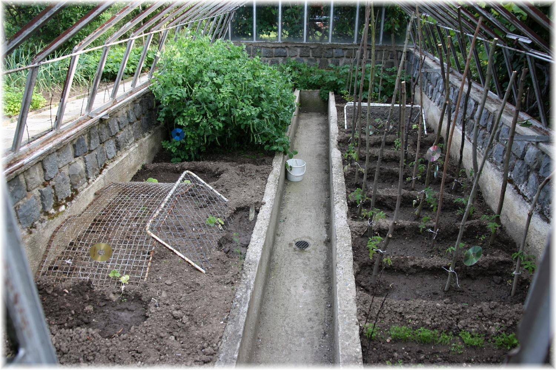 Vlastníma rukama - ze skleníku bazén - Původní stav skleníku. Konstrukci, která byla bez skel jsme odstarnili a pár let tu rostla zelenina - něco jako vyvýšené záhony