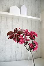 jaro je u nás ve znamení růžových odstínů