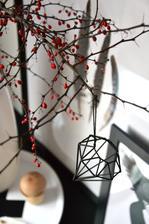 zatím si pořád užívám podzimních dekorací a lehce začínám pokukovat po zimních a plávovat co si letos vyrobíme