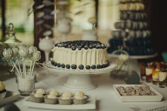 ..naprosto famózní bezlepkový vegan dort, po kterém se zaprášilo, než jsme se vrátili z focení..