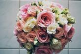 Růže v pastelových tónech - foto Zuzana Kroupová