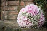Netradiční kytice s hortenzií a nevěstiným závojem - foto Stanislav Matouš