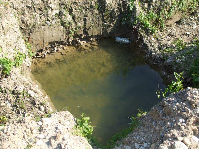 38 - Jama na čističku, dočasné kúpalisko pre žabu :)