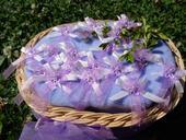 Bílo-fialové vývazky s kytičkou,
