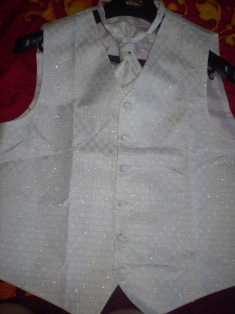 Moje prípravy - vestička a francúzska kravata