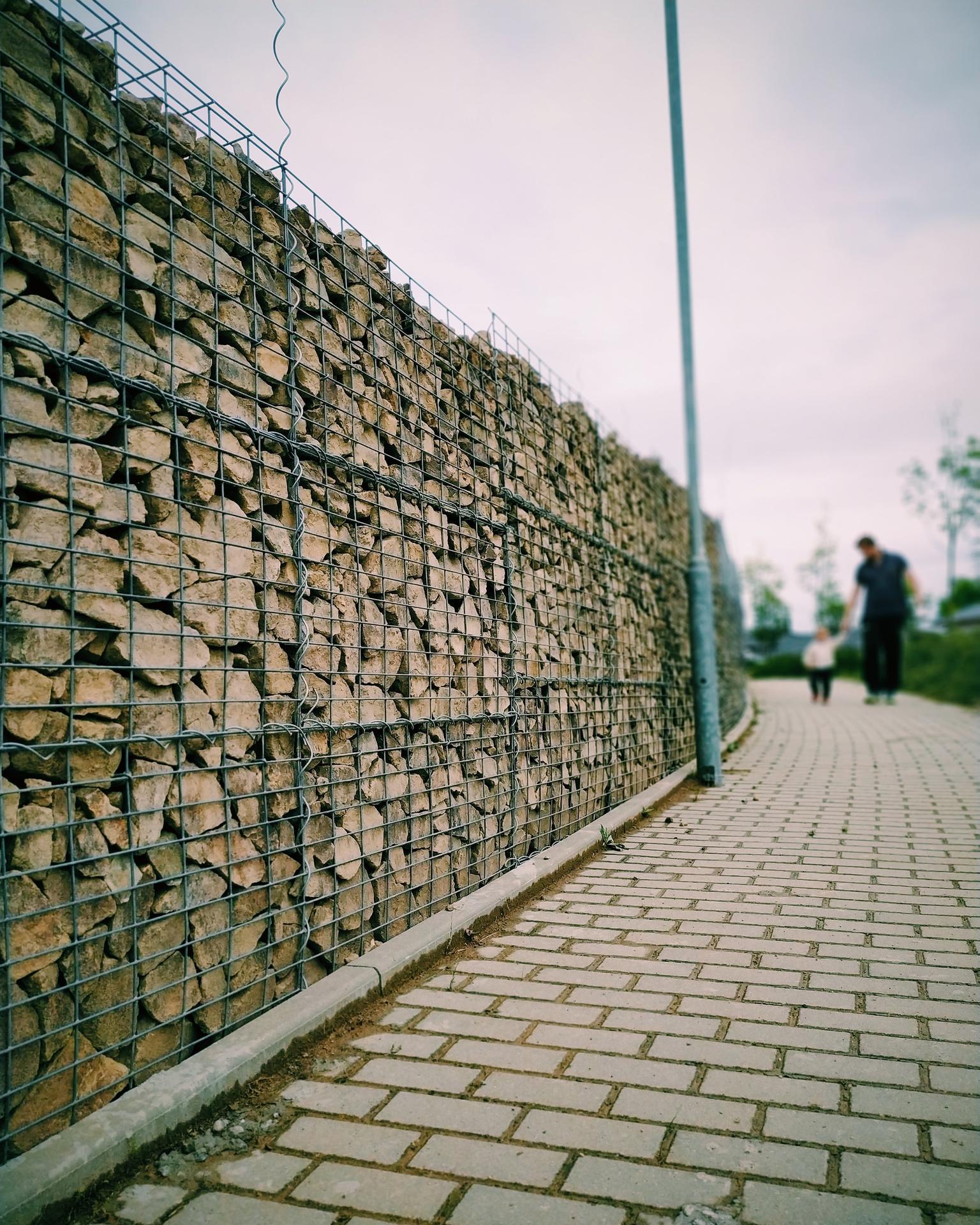 Náš domov ve svahu - Kameny vytříděné z naší výkopové zeminy jsme se rozhodli použít na gabionový plot. Využili jsme tak v podstatě všechno, co jsme tu už měli. Vypadá to super, mám z toho radost. Jen by ten plot mohl růst rychleji :D