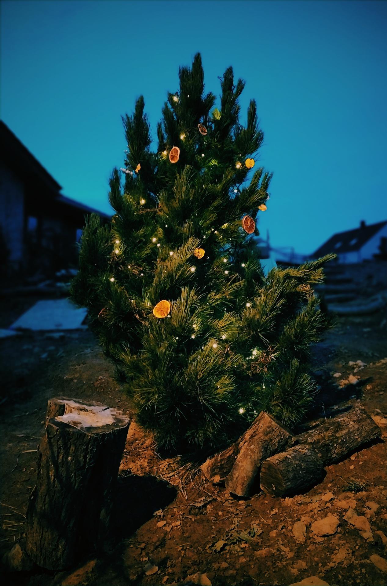Náš domov ve svahu - Neříkala jsem, že jí Vánoce budou slušet?