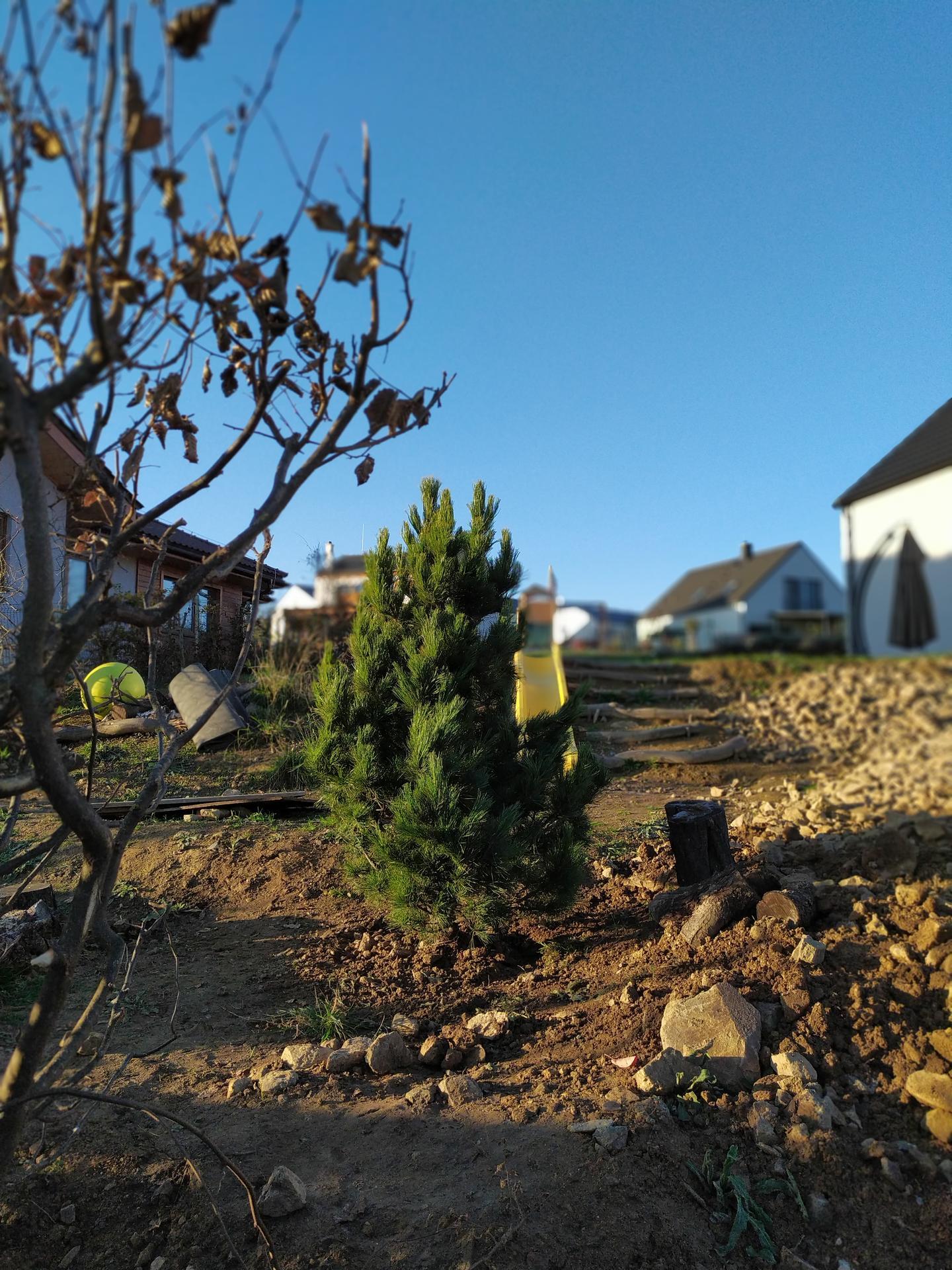 Náš domov ve svahu - Zapadla krásně a myslím, že jí budou slušet i Vánoce :)