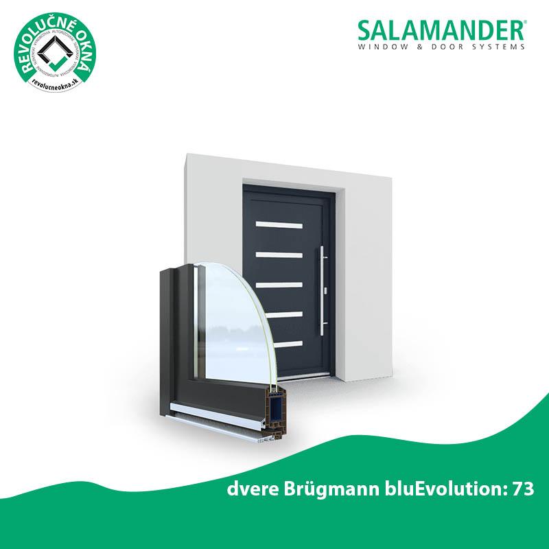 SALAMANDER ponuka okien a dverí - Prvý dojem vás presvedčí. Dvere Brügmann bluEvolution: 73 sú navrhnuté pre vysoké požiadavky, ktoré musia spĺňať všetky vchodové dvere. Ich extrémne stabilná konštrukcia odolá stálemu namáhaniu a napätiu, a zároveň poskytuje maximálny komfort.