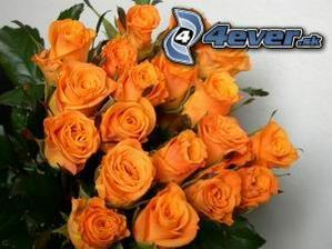 Z takýchto ruží chcem kyticu