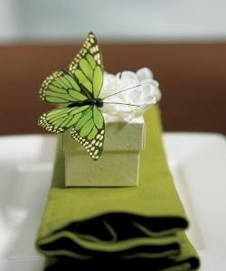 Dotek motýlů - Obrázek č. 28