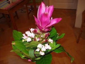 kytky pro druzicky